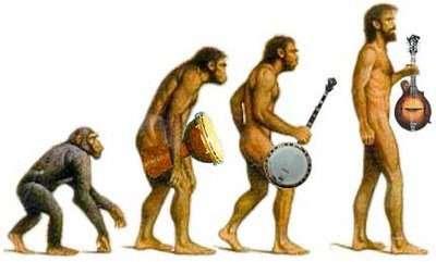evolution-music-audicus