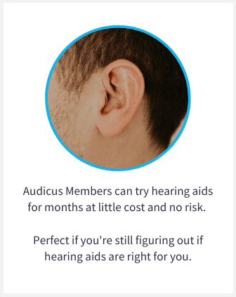 The best hearing aids for the best price